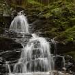 高良城川支流の滝