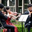 旧古河庭園・春バラの音楽会・・2