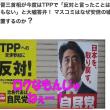 選挙公約=マニフェストとは日本人絶滅!という意味だ【知らないでマニフェストしてる日本人】