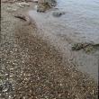 琵琶湖の湖畔で石探し