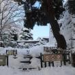 冬の金沢城跡公園 ③