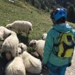 Zermatt Schwarzsee Trail