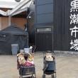 和歌山城の次は・・・