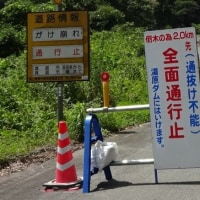08/19中国山地ツー7(蒜山と言えば)