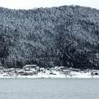 湖北冬景色