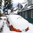 春近い清里高原の大雪~今冬一番の積雪量かも~40センチ以上で雨傘も埋まるほど