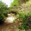 豪雨の影響 能勢、亀岡、京北林道ツーリング