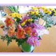 畑で育てた菊の花