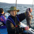 11月の釣果(荒天のため1日しか釣行出来ませんでした)