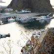 宗谷岬からオホーツク海沿岸を走る … 岬めぐりのバスに乗って(北海道の岬をめぐる旅) 4