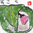 絵手紙:菜花・桜餅・デコポン