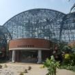 夢の島・熱帯植物園(江東区)