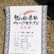 穂の国・豊橋ハーフマラソン2019