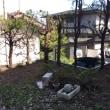 我が家の庭の様子。