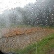 脱穀のち雨