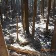 谷倉山で山遊び。