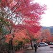 四国の秋深まりました