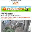 上野動物園ライブカメラより|д・)