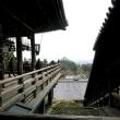奈良観光の定番コース・興福寺、猿沢池、大仏殿、二月堂をめぐる