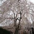 今日は夏日の千里山 4月21日(土)晴れ