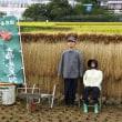八王子高月町の田んぼアート 2017.9.23