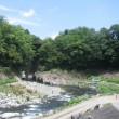 甲州街道を歩く-野田尻から犬目を経て大月まで その12