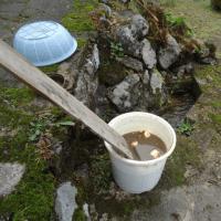 里芋を洗う話