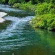 勝浦川を上流へ