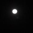 明け方に見る十六夜の月