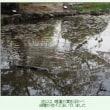 ■【カシャリ! ひとり旅】43京都府 勧修寺21 氷室池越しに見る