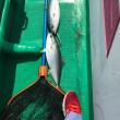 24日ライトジギング出船‼️漁市丸‼️釣り仲間大募集中‼️