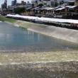 東寺と鴨川沿い