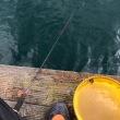 2017筏チャレンジ第4戦は、的矢湾三ヶ所・常宿永田渡船。また・・・・雨(>_<) しかも結構な降りで、激風付き( ^ω^ )