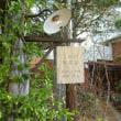 長沼の隠れ家カフェ