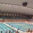 水泳の試合