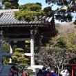 春の鎌倉散策 ~2.長谷寺~