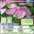 [う山先生・分数]【算数・数学】【う山先生からの挑戦状】分数565問目