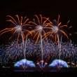編集中:第30回記念 やつしろ全国花火競技大会 まず42枚