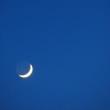 昨夜の三日月と金星