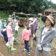 2017年8月2日(日) 秋の野菜種まき  (年間会員)
