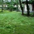 奈良・秋篠寺~神功皇后陵~奈良公園