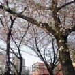大阪環状線 桜ノ宮 2018.3.30