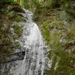 武生不動の滝