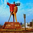「中国特色小鎮」(中国における特色のある町)として、127箇所を公表