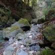 吉野川源流の上谷川へ