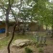 5ケ月ぶりの緑化センター