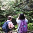 屋久島晴れ、白谷雲水峡に行ってきました。