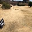 和歌山旅行、紀美野のかみふれあい公園パークゴルフ場
