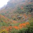 国立公園雲仙紅葉情報(第3号)