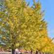 国鉄色と、青い空と、秋色と・・
